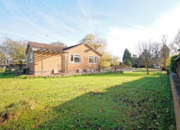 Thumbnail 4 bed bungalow for sale in Watery Lane, Scropton