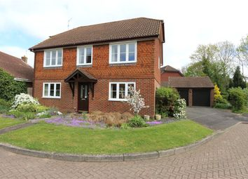 Thumbnail 4 bed property for sale in The Meadows, Romsey, Hampshire