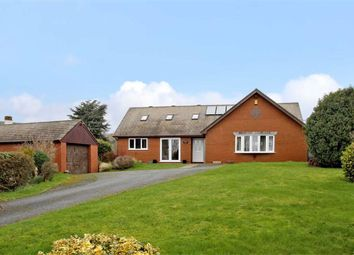 Thumbnail 4 bed detached bungalow for sale in Pant, Oswestry