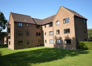 Thumbnail 2 bedroom flat for sale in Gilman Road, Norwich