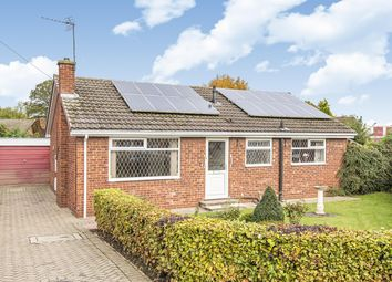 Thumbnail 3 bed detached bungalow for sale in Chestnut Rise, Hemingbrough, Selby