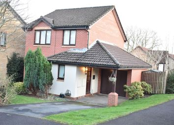Thumbnail 3 bed detached house to rent in Collingwood Close, Thornwell, Chepstow