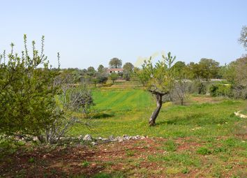 Thumbnail 2 bed country house for sale in Scarciglia, Monopoli, Bari, Puglia, Italy