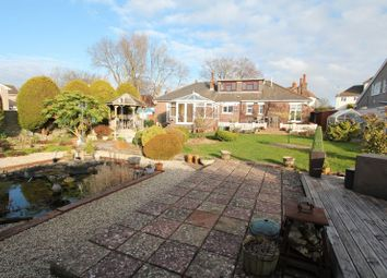 Thumbnail 4 bedroom detached bungalow for sale in South Road, Sully, Penarth