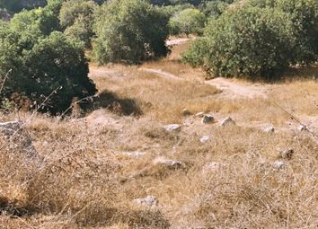 Thumbnail Land for sale in Tremithousa, Paphos, Cyprus