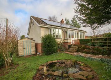 Thumbnail 2 bedroom detached bungalow to rent in Grove Common, Sellack, Ross-On-Wye