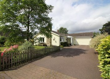 Thumbnail 3 bed detached bungalow for sale in Coniston Road, Brooke, Norwich