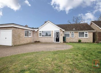 Thumbnail 5 bed detached bungalow for sale in Beech Close, Sproughton, Ipswich