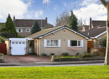 Thumbnail 3 bed detached bungalow for sale in Walton Lane, Sandal, Wakefield