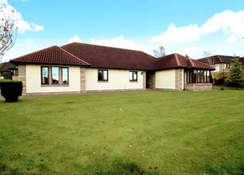 Thumbnail 3 bed detached house for sale in Comerton Place, Drumoig