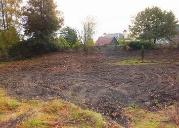 Thumbnail Land for sale in Bridge House, Murthly