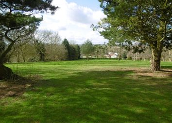Thumbnail Land for sale in Amenity Land / Paddock, Hillside, Marton, Gainsborough, Lincolnshire