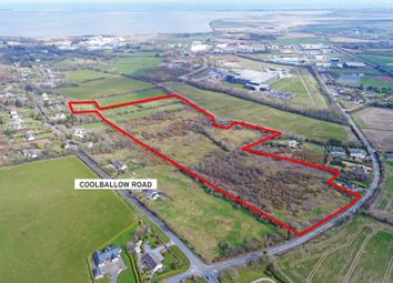 Thumbnail Land for sale in c. 21 Acres Of Development Land At Coolballow, Drinagh, Ireland