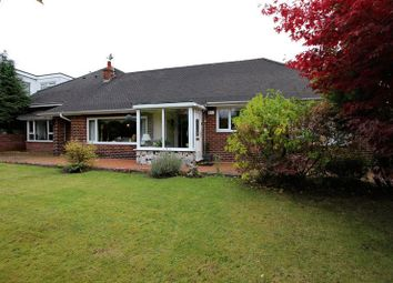 Thumbnail 5 bedroom bungalow to rent in The Starkies, Manchester Road, Bury