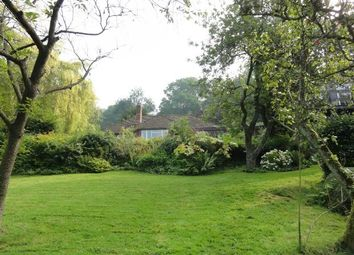 Thumbnail 5 bedroom detached house to rent in The Purlieu, Upper Colwall, Nr Malvern