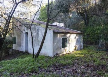 Thumbnail Farmhouse for sale in Setubal, Portugal