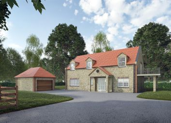 Thumbnail 5 bed detached house for sale in The Paddock, Peel Street, Lincoln