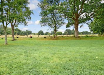 Thumbnail 3 bed detached bungalow for sale in Woodchurch Road, Bethersden, Ashford, Kent