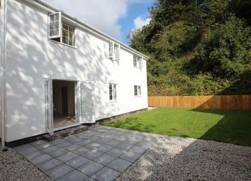 Thumbnail 4 bed detached house for sale in Station Road, Lifton