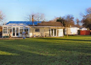 Thumbnail 3 bed detached bungalow for sale in Hafod Moor, Gwernafield, Flintshire