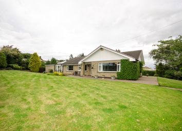Thumbnail 4 bedroom bungalow for sale in Hebron, Morpeth