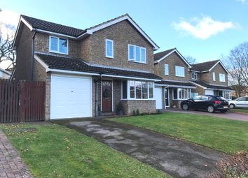 Thumbnail 4 bed detached house for sale in Celestine Close, Chatham, Kent