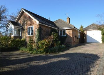 Thumbnail 3 bedroom detached bungalow for sale in Bolle Road, Alton, Hampshire