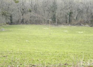 Thumbnail Land for sale in In 4 Lots, Lampeter, Carmarthenshire