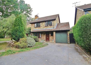 Thumbnail 4 bed property to rent in Ivy Drive, Lightwater, Surrey