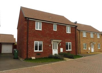 Thumbnail 4 bed property to rent in Duke Meadows, Market Deeping, Peterborough
