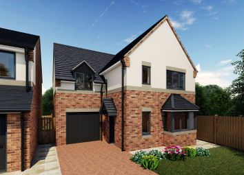 Thumbnail 4 bedroom detached house for sale in Rear Of 239 Sandy Lane, Worksop, Nottinghamshire