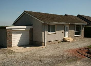 Thumbnail 2 bed bungalow for sale in Ilex, Braehead, Kirkinner