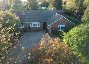 Thumbnail 4 bed detached bungalow to rent in Broad Halfpenny Lane, Tadley