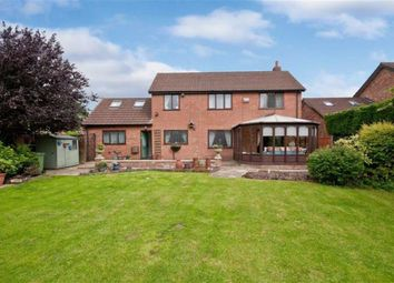 Thumbnail 5 bed property for sale in Ings Lane, Waltham, Grimsby
