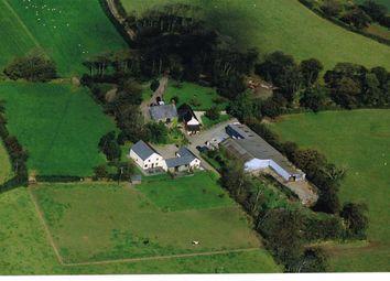 Thumbnail Leisure/hospitality for sale in Bradworthy, Holsworthy, Devon