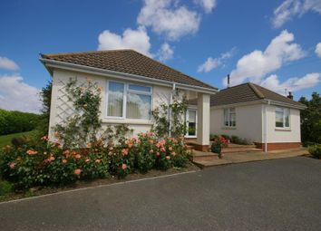 Thumbnail 4 bed bungalow for sale in Five Bells, Watchet