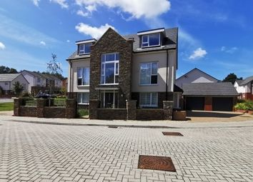 Thumbnail 5 bed detached house to rent in Clos Coed Collings, Swansea