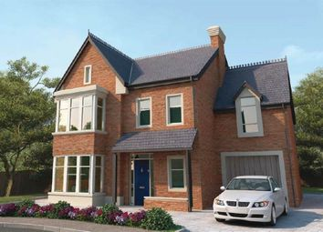 Thumbnail 5 bedroom detached house for sale in 6, Maple Hill, Belfast