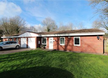 Thumbnail 3 bed semi-detached bungalow to rent in Brookside Avenue, Coventry, West Midlands