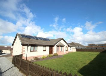 Thumbnail 5 bedroom detached bungalow to rent in 15 Balnacoul Lane, Mosstodloch, Fochabers, Moray