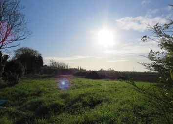 Thumbnail Land for sale in Marsh Road, Gedney Drove End, Spalding