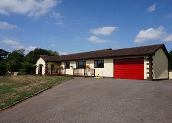 Thumbnail 4 bedroom detached bungalow for sale in Newton St Cyres, Crediton