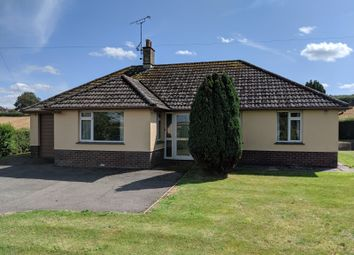 Thumbnail 3 bed detached bungalow for sale in Sodom Lane, Marnhull