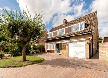 Thumbnail 4 bed detached house for sale in Bay Tree Walk, Watford, Hertfordshire