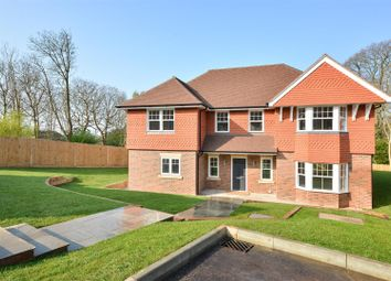 Thumbnail 5 bed detached house for sale in St. Helens Court, St. Helens Park Road, Hastings