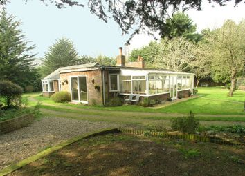 Thumbnail 4 bedroom detached bungalow for sale in Wangford Road, Reydon, Southwold, Suffolk