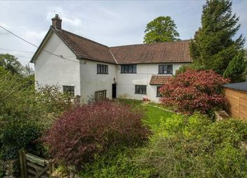 Thumbnail 5 bed detached house for sale in Buckland St. Mary, Chard, Somerset