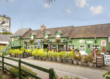 Thumbnail Restaurant/cafe for sale in The Lobster Pot, Carne, Wexford County, Leinster, Ireland