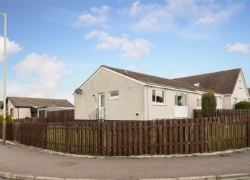 Thumbnail 3 bed semi-detached bungalow for sale in Juniper Place, Perth