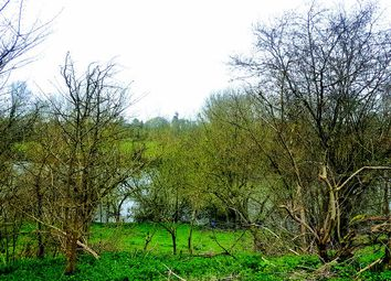 Thumbnail Land for sale in Streatley, Reading